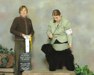 Marlow Best Puppy 2007