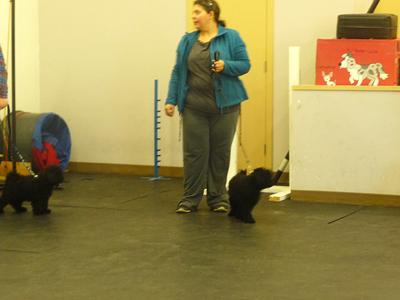 Leporello at class