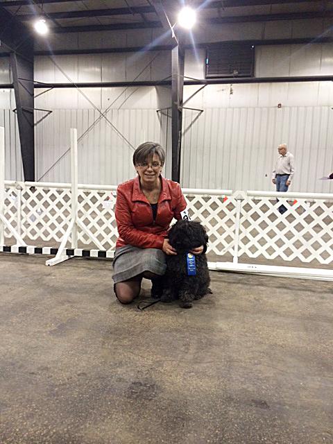 Scarlette Nov 7 Rally Q